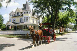 Amelia Island Horse and Carriage